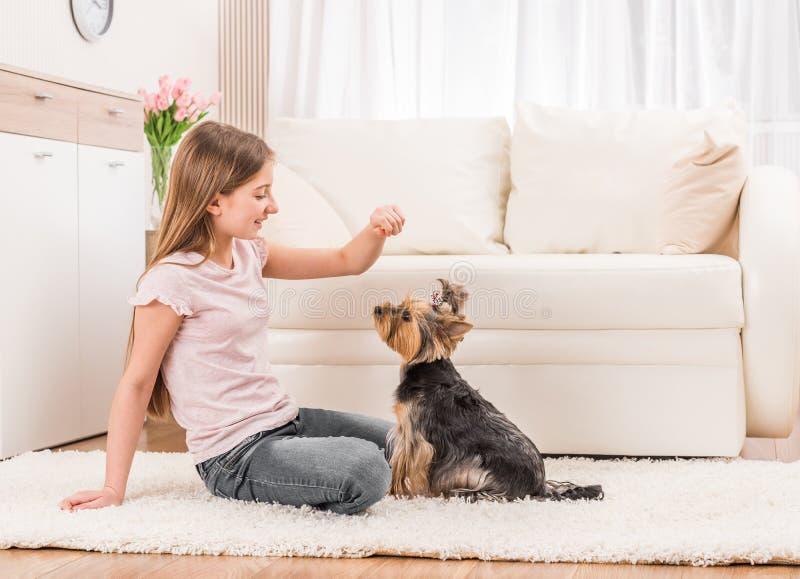 Leuk puppy en gelukkig jong meisje royalty-vrije stock foto's