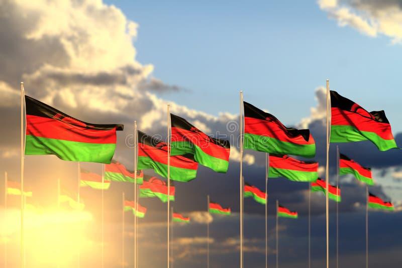 Leuk vele die vlaggen van Malawi op zonsondergang in rij met zachte nadruk en plaats voor inhoud wordt geplaatst - om het even we stock illustratie