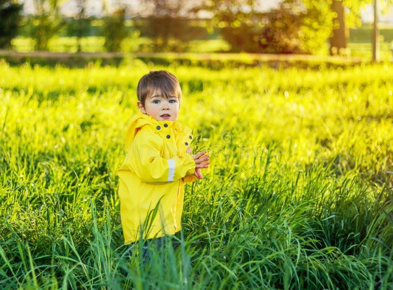 Leuk weinig babyjongen in gele regenjas die op gebied met hoog groen gras blijven royalty-vrije stock fotografie
