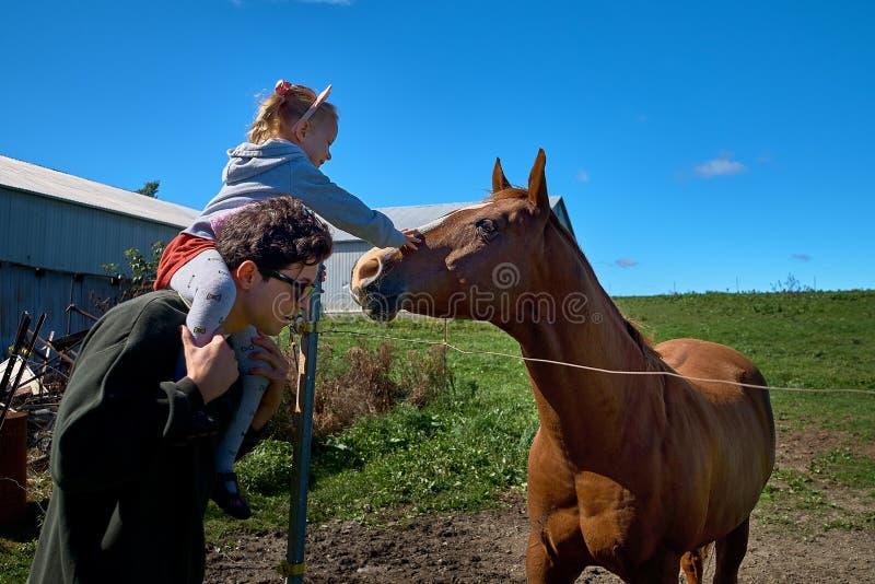 Leuk weinig babymeisje die een groot paard op een boerderij in de herfst voeden royalty-vrije stock afbeeldingen