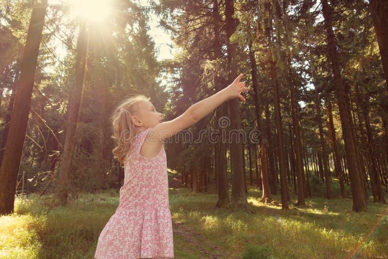 Leuk weinig het bereiktak van het kindmeisje in de zomerbos royalty-vrije stock afbeeldingen