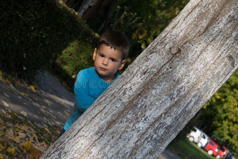 Leuk weinig jongen die achter de boom in het park gluren stock afbeeldingen