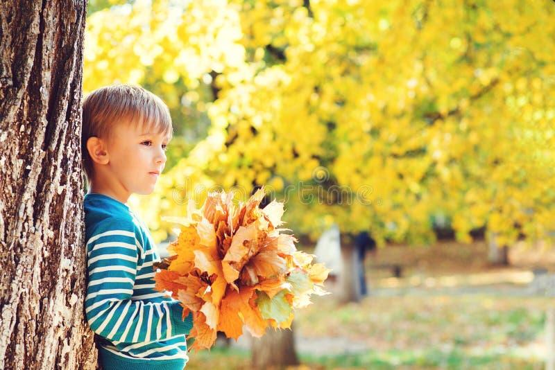 Leuk weinig jongen die in de herfst op aardgang spelen De bos van de jongensholding van esdoornbladeren in park De herfst, kinder stock afbeelding