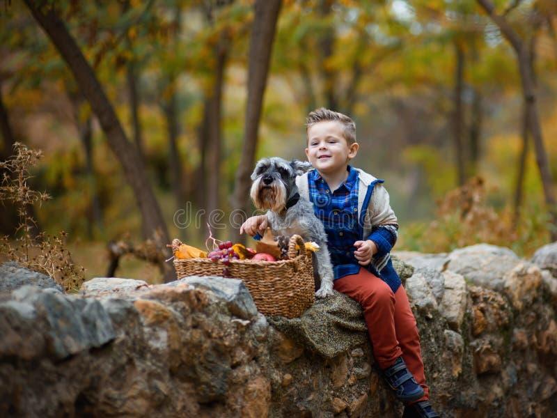 Leuk weinig jongen met een hond in de herfst stock afbeelding