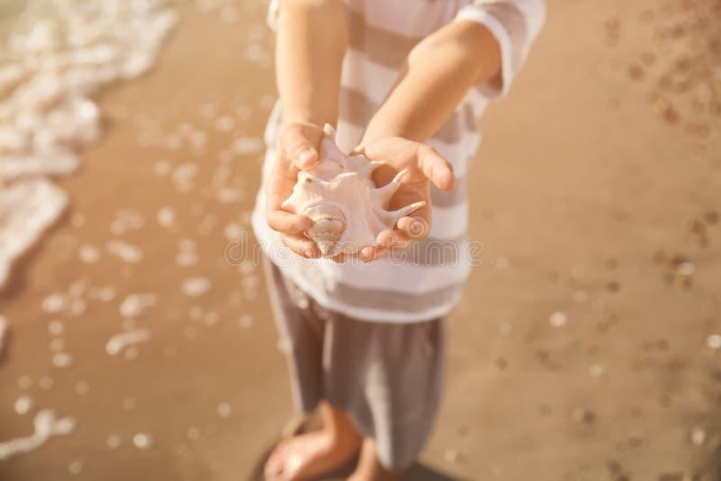 Leuk weinig jongen met overzeese shell op strand, close-up royalty-vrije stock afbeeldingen