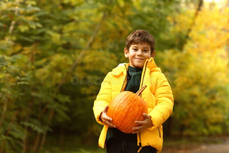 Leuk weinig jongen met pompoen in de herfstpark stock foto's