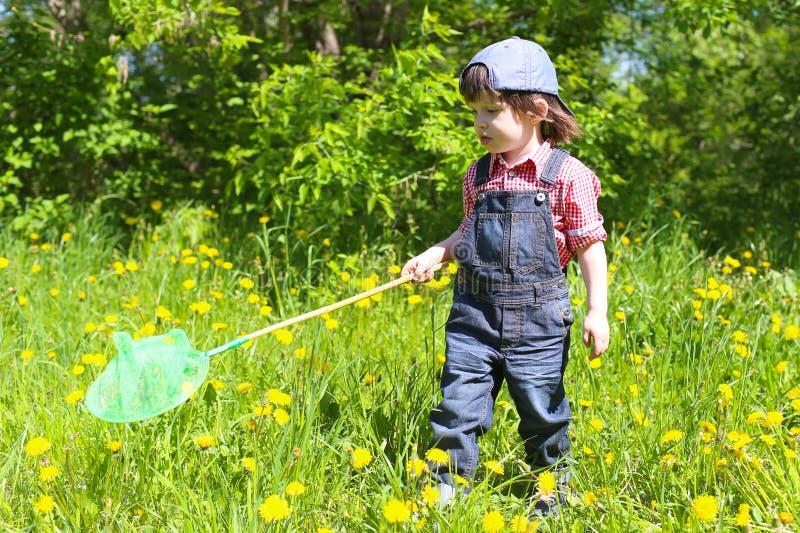 Leuk weinig jongen met vlinder netto in de zomer in openlucht royalty-vrije stock afbeeldingen