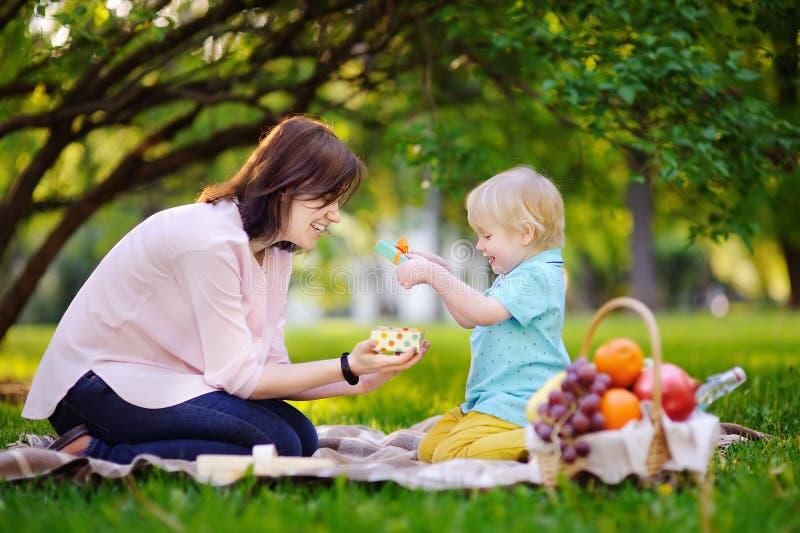 Leuk weinig jongen met zijn jonge moeder die keurig verpakte gift openen tijdens picknick in zonnig park royalty-vrije stock fotografie
