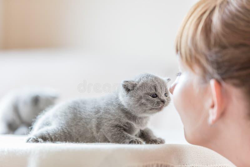 Leuk weinig kat en vrouw die neuzen wrijven stock foto