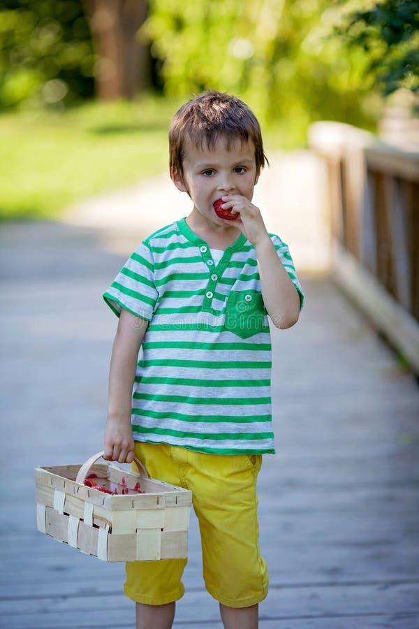 Leuk weinig Kaukasische jongen, die aardbeien in het park eten royalty-vrije stock foto's
