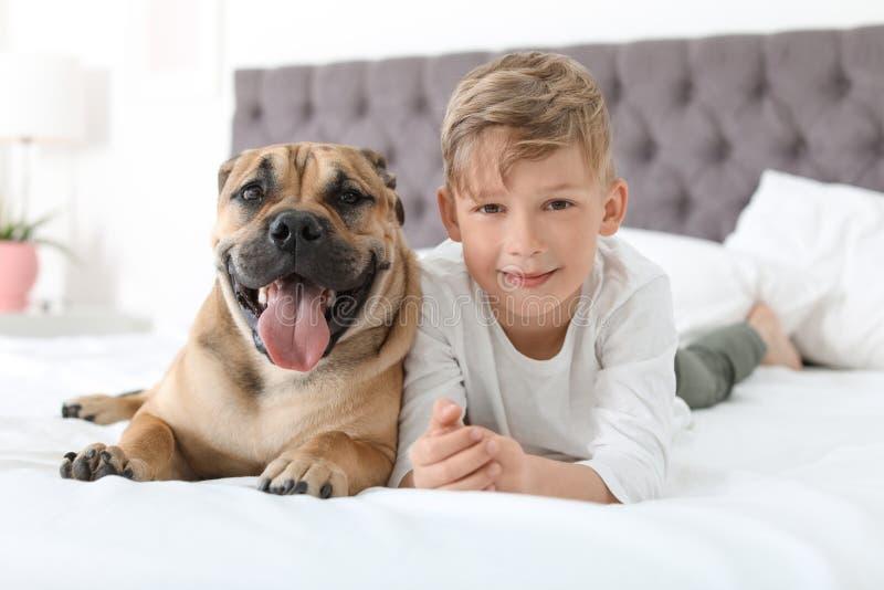 Leuk weinig kind met zijn hond die op bed rusten royalty-vrije stock fotografie