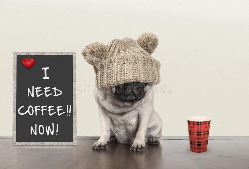 Leuk weinig pug puppyhond met slechte ochtendstemming, die naast bordteken met tekst I behoeftekoffie zitten nu, exemplaarruimte royalty-vrije stock afbeeldingen