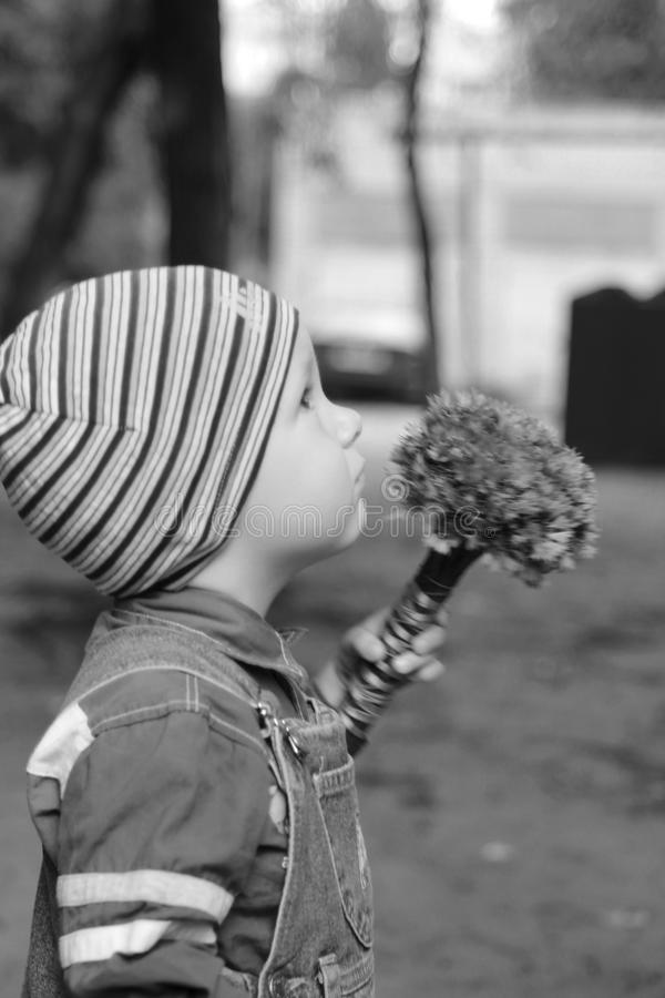 Leuke babyjongen die bellflowers, selectieve nadruk bekijken royalty-vrije stock fotografie