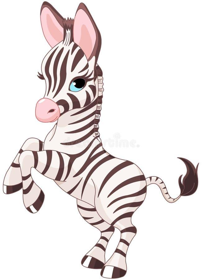 Leuke babyzebra stock illustratie