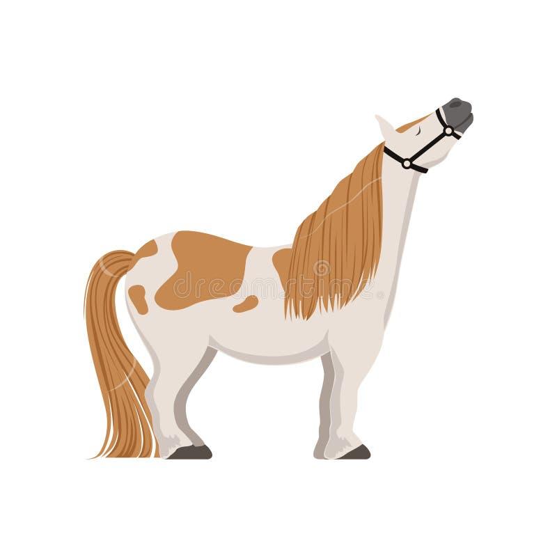 Leuke bevlekte poney, volbloed- paard vectorillustratie vector illustratie