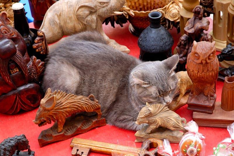 Leuke grappige grijze kattenslaap onder antieke decorvoorwerpen royalty-vrije stock foto's
