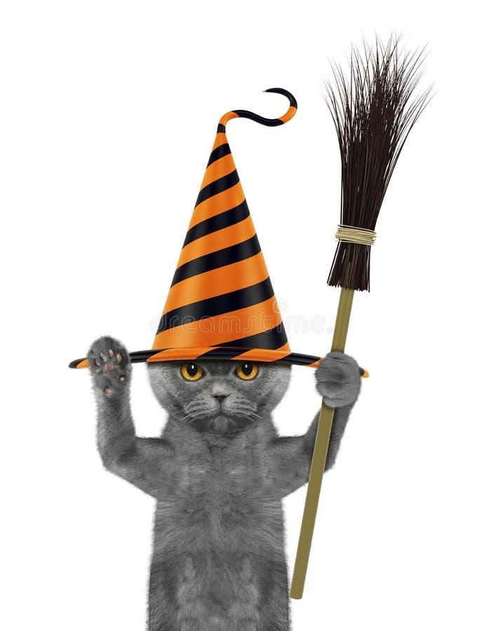 Leuke Halloween-kat in grappige die hoed met bezem - op wit wordt geïsoleerd stock foto's
