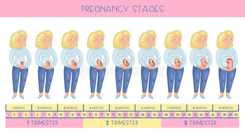 Leuke het glimlachen zwangere meisjes vectorkaart vector illustratie