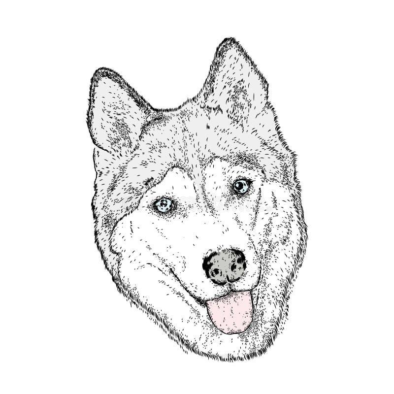 Leuke hond in de vector husky stock illustratie