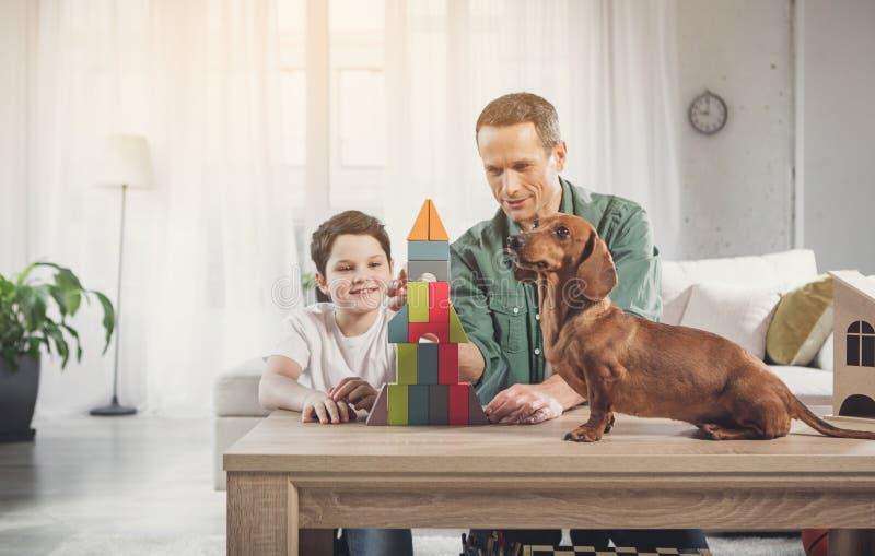 Leuke hond letten die op hoe haar eigenaars die weinig huis bouwen royalty-vrije stock foto