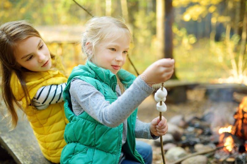 Leuke jonge zusters die heemst op stok roosteren bij vuur Kinderen die pret hebben bij kampbrand Het kamperen met kinderen in dal royalty-vrije stock afbeelding
