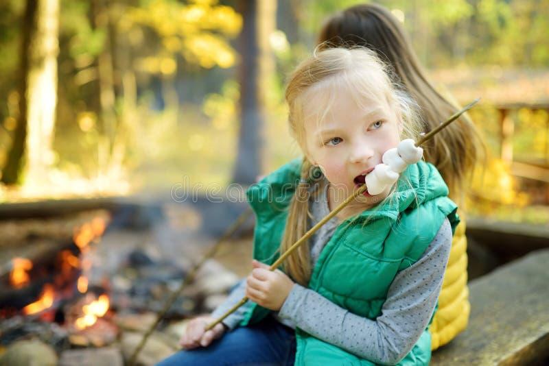Leuke jonge zusters die heemst op stok roosteren bij vuur Kinderen die pret hebben bij kampbrand Het kamperen met kinderen in dal royalty-vrije stock foto's