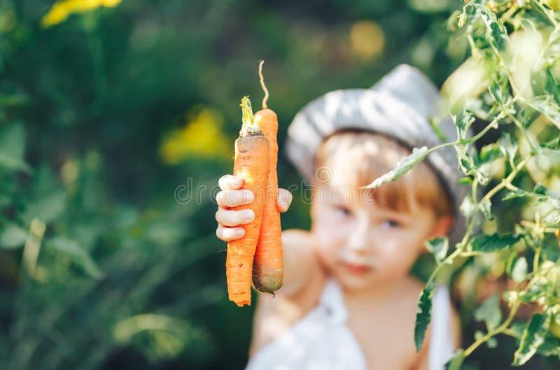 Leuke jongen die in hoed en vrijetijdskleding tomatenang rondhangen die camera, jong geitje het model stellen in tuin bekijken royalty-vrije stock foto's