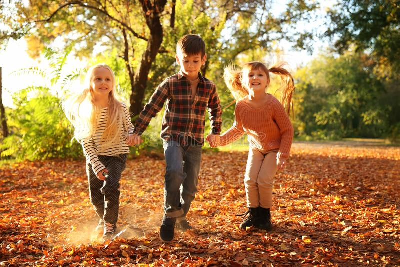 Leuke kleine kinderen die pret in de herfstpark hebben royalty-vrije stock foto's