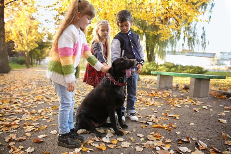Leuke kleine kinderen met hond in de herfstpark stock afbeeldingen
