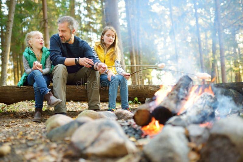 Leuke kleine zusters en hun vader roosterende heemst op stokken bij vuur Kinderen die pret hebben bij kampbrand Het kamperen met royalty-vrije stock foto