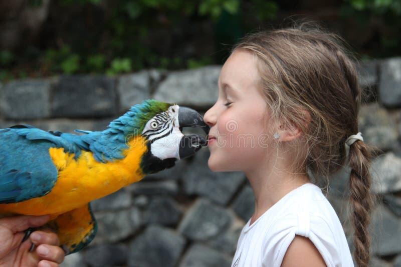 Leuke meisje en papegaai royalty-vrije stock foto's
