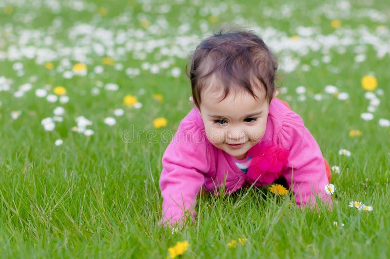 Leuke mollige peuter die op het gras kruipen die aard in openlucht in het park onderzoeken stock afbeelding