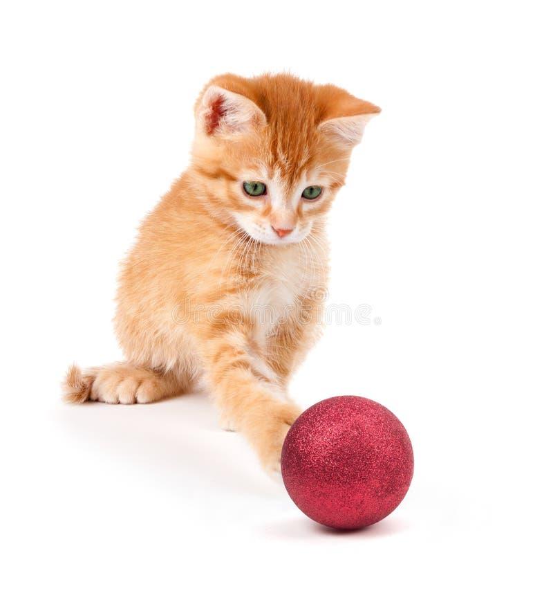 Leuke Oranje Kitten Playing met een Kerstmisornament op Wit stock foto