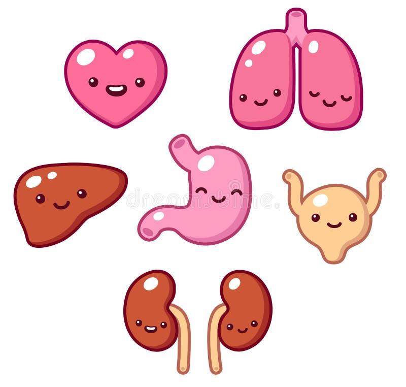 Leuke organen vector illustratie