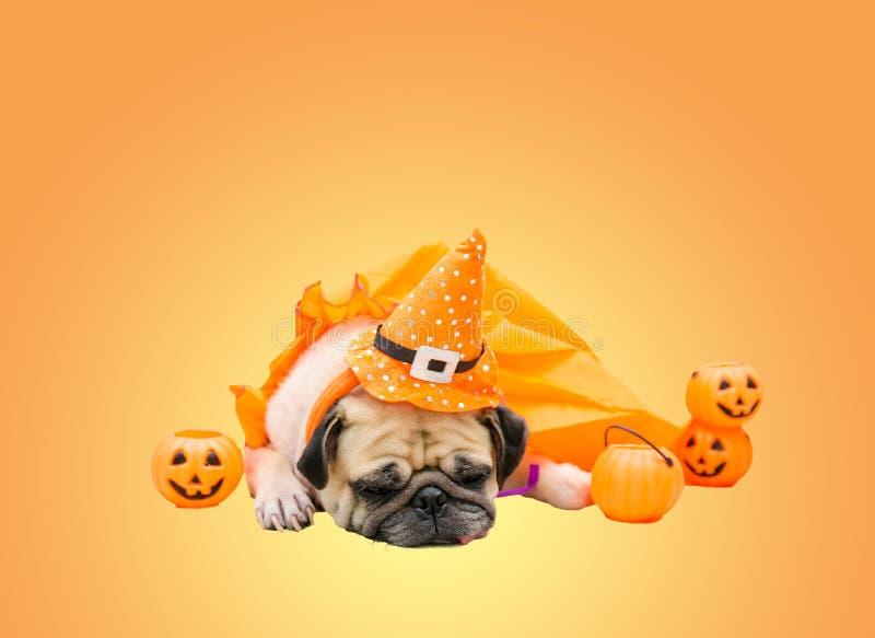 Leuke pug hond met kostuum van gelukkige Halloween-dagslaap op bank w stock fotografie