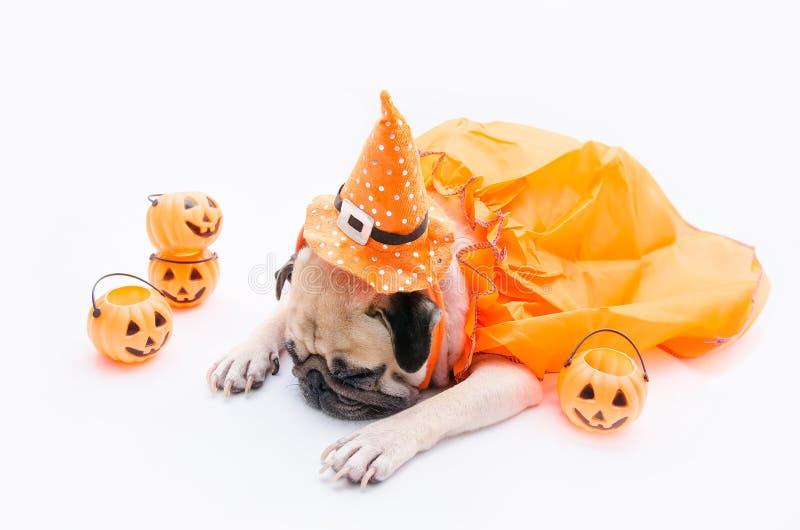Leuke pug hond met kostuum van gelukkige Halloween-dagslaap op bank w stock afbeelding
