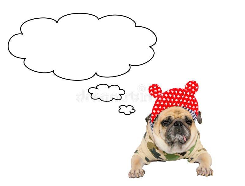 Leuke Pug Hond met lege wolkenbel boven haar die hoofd, op wit met kostuum met het Knippen van weg op Hond wordt geïsoleerd royalty-vrije stock foto's