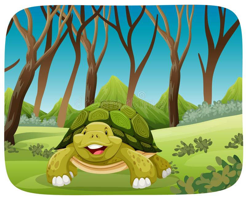 Leuke schildpad in bos stock illustratie