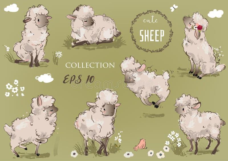 Leuke sheepsinzameling vector illustratie
