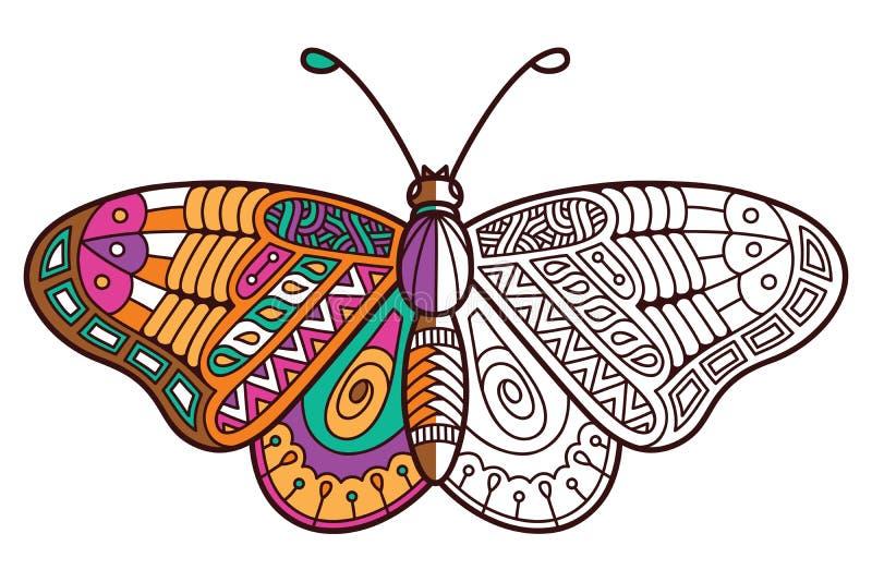 Leuke vlinder halve kleuring royalty-vrije illustratie