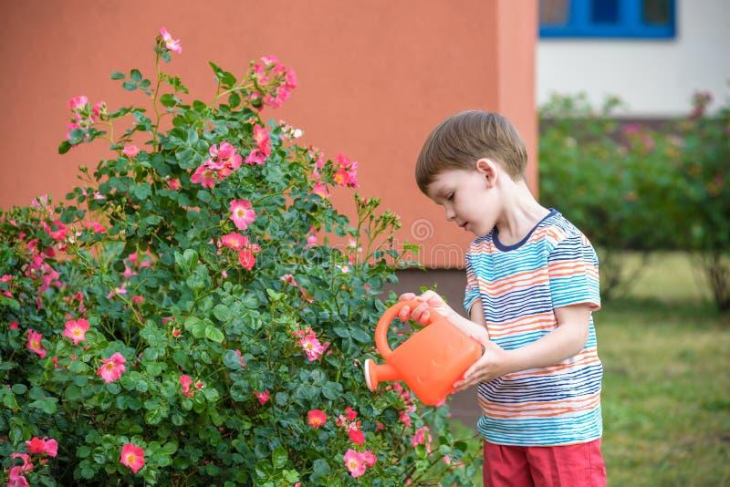 Leuke weinig jongen het water geven installaties met gieter in de tuin Activiteiten met kinderen in openlucht royalty-vrije stock fotografie