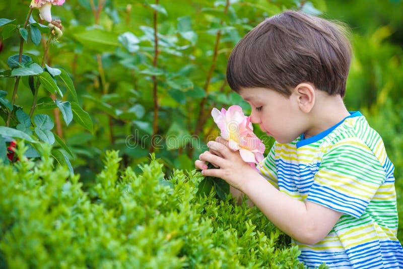 Leuke weinig jongen het water geven installaties met gieter in de tuin Activiteiten met kinderen in openlucht royalty-vrije stock foto