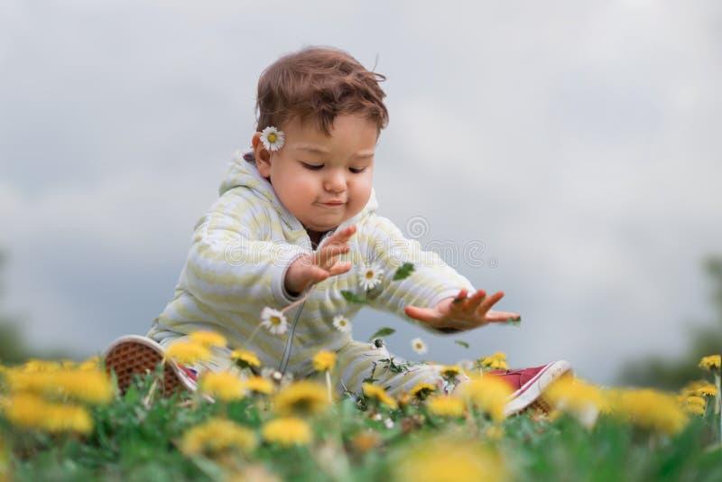 Leuke zuigelingskind het plukken bloemen op een bloemgebied royalty-vrije stock afbeeldingen