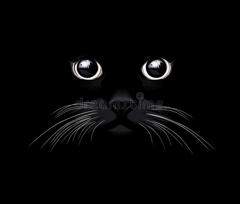 Leuke Zwarte Cat Eyes Watching You stock illustratie