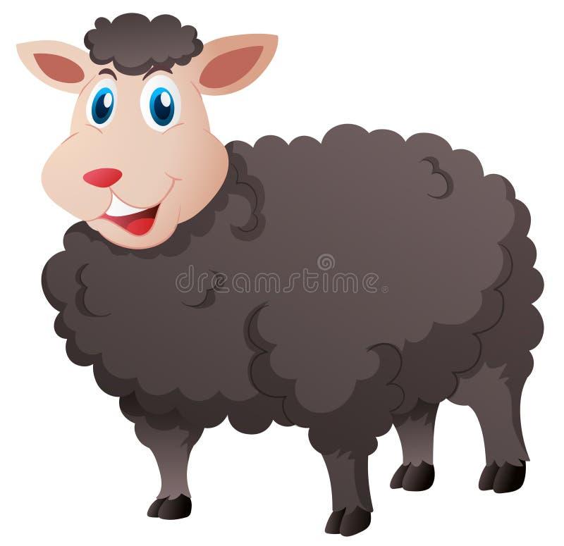 Leuke zwarte schapen op witte achtergrond stock illustratie