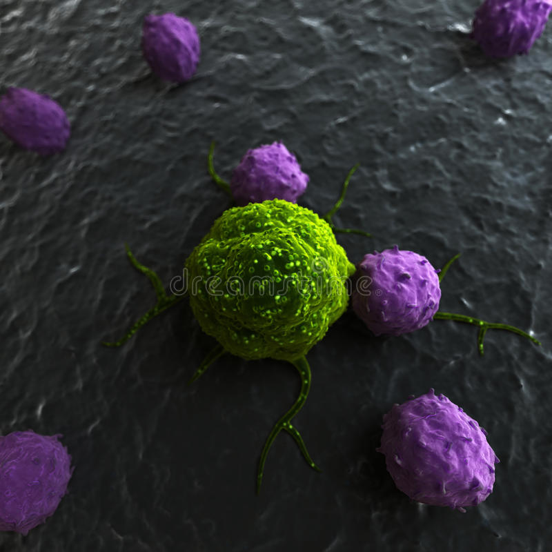 Leukocytes attacking a cancer cell royalty free illustration