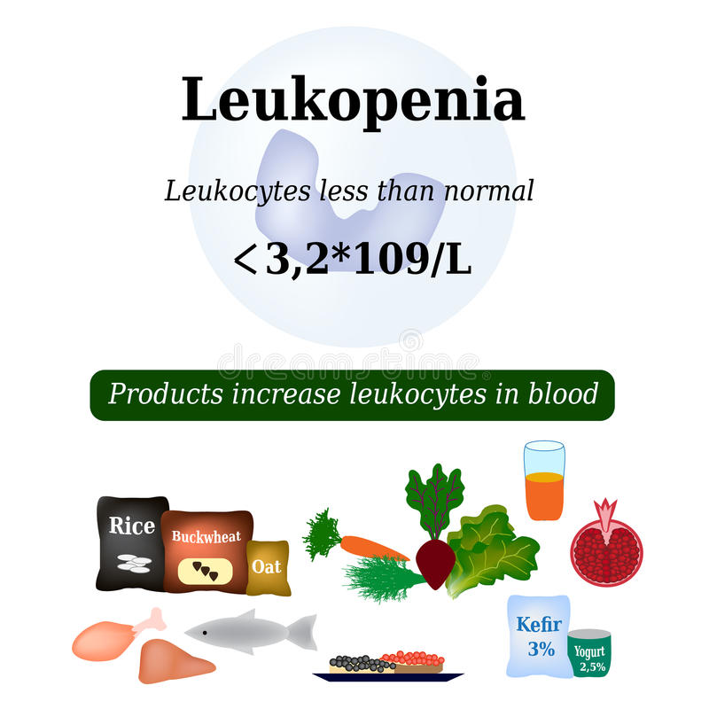 Leukopenia. Reduced number of leukocytes in the blood. Products increase white blood cells. Vector illustration royalty free illustration