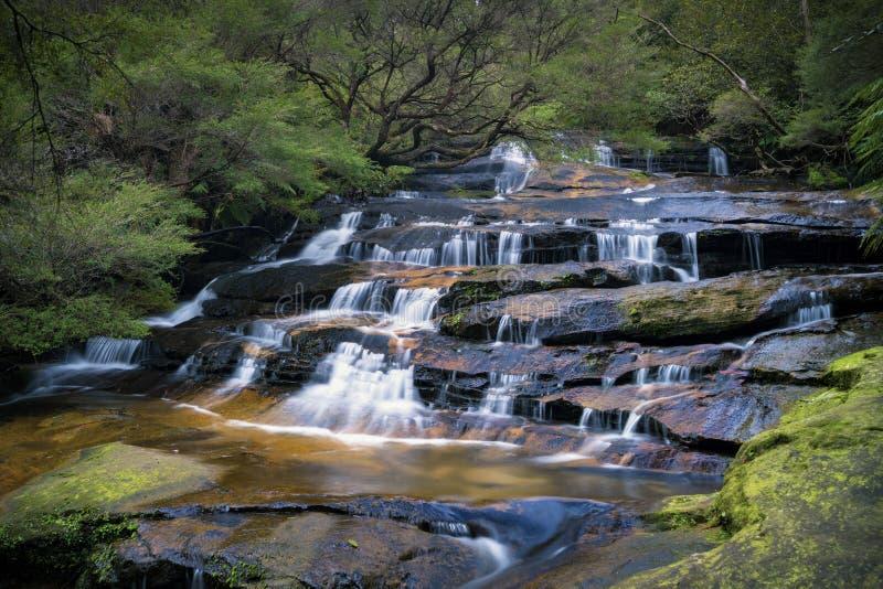 Leura小瀑布在蓝山山脉国家公园,澳大利亚 库存照片