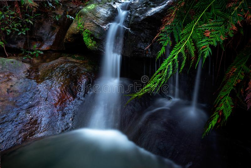 Leura каскадирует водопад стоковые фото