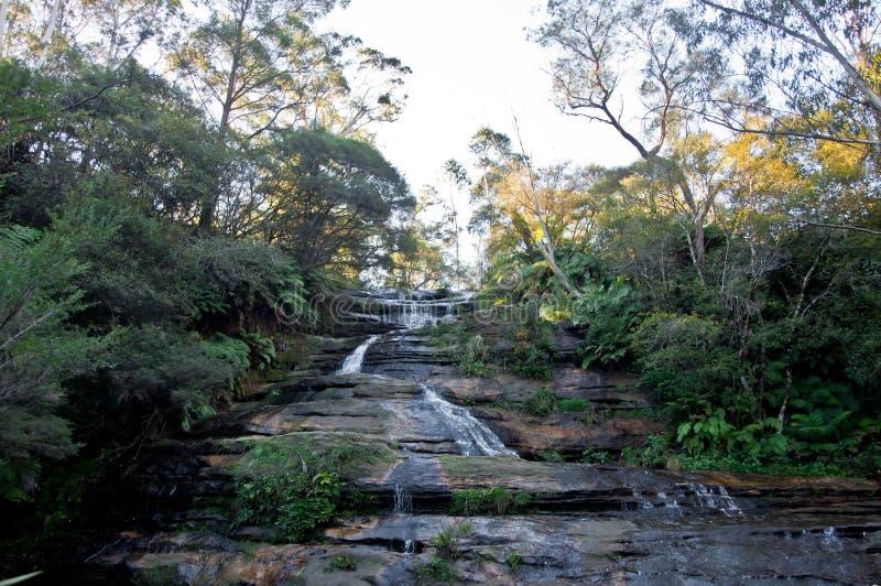 Leura каскадирует водопад около Katoomba в голубом nationa гор стоковые фотографии rf